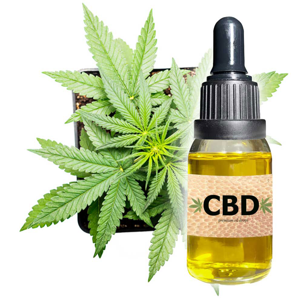 What Things Should You Consider While Buying CBD Oil?